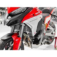 Protezione Radiatore Ducabike Gr10 Mtsv4 Argento