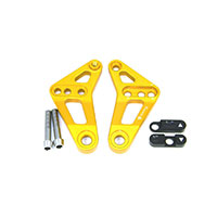 Ducabike Rear Link Suspension Gold