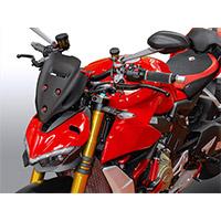 Cupolino Ducabike Cup14 Touring Ducati Sf V4 Rosso