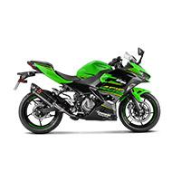Akrapovic Slip On Carbon Racing Ninja 400