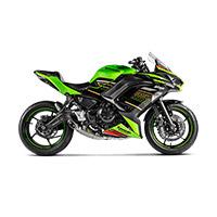 Scarico Akrapovic Racing Titanio Ninja/z650 2020