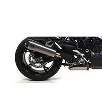 Silenciador Arrow Works ECE titanio S1000XR 2020