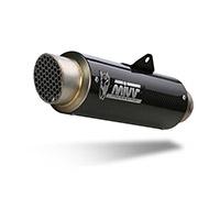 Mivv Gp Pro Carbon Approved Slip On Bmw G 310r
